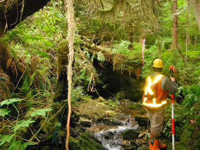Caliber Bridge Surveyor 1